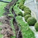 zadbany trawnik 3