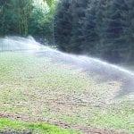 nawadnianie szkolki lesnej 6
