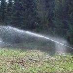 nawadnianie szkolki lesnej 5