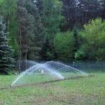 nawadnianie szkolki lesnej 22