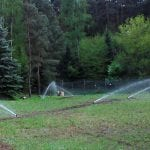 nawadnianie szkolki lesnej 21
