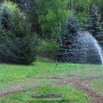 nawadnianie szkolki lesnej 20