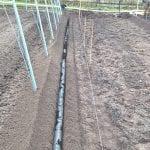 prace gruntowe w plantacji 3