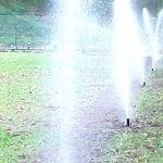nawadnianie szkolki lesnej 16